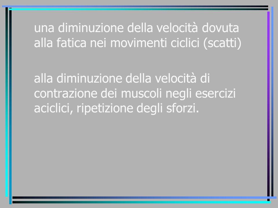 una diminuzione della velocità dovuta alla fatica nei movimenti ciclici (scatti) alla diminuzione della velocità di contrazione dei muscoli negli eser