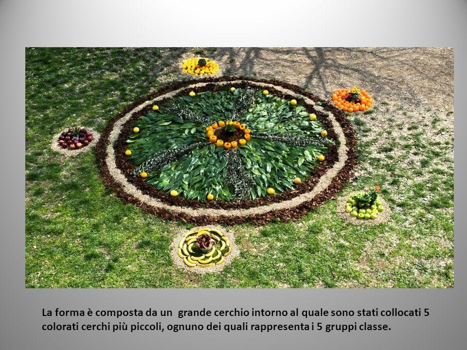 La forma è composta da un grande cerchio intorno al quale sono stati collocati 5 colorati cerchi più piccoli, ognuno dei quali rappresenta i 5 gruppi
