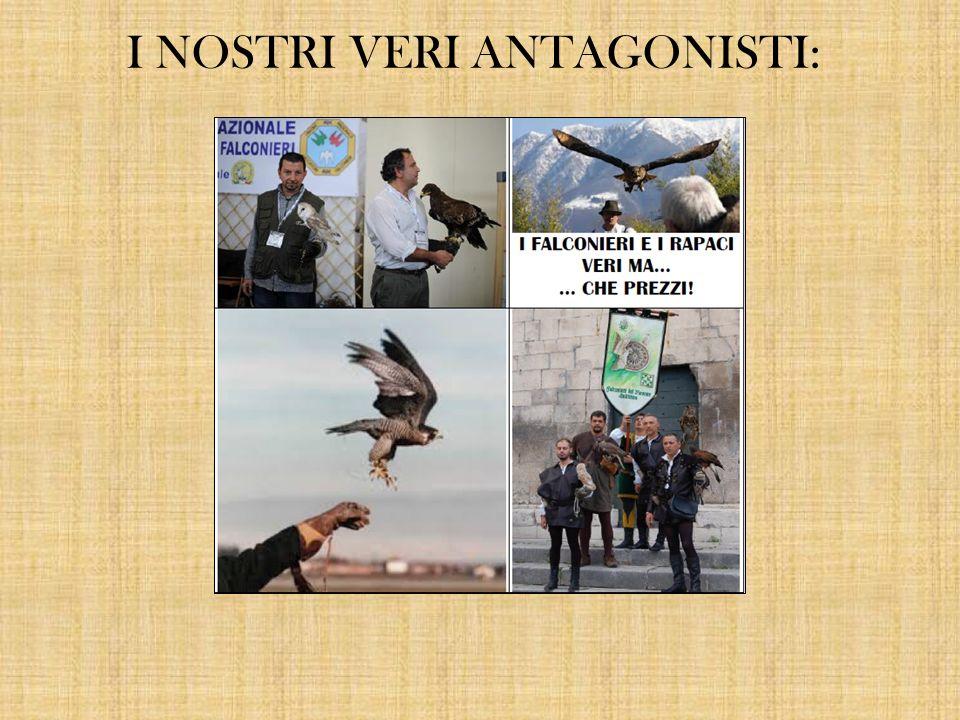 IL NOSTRO PROTOTIPO: LE NOSTRE PRIME COVER: