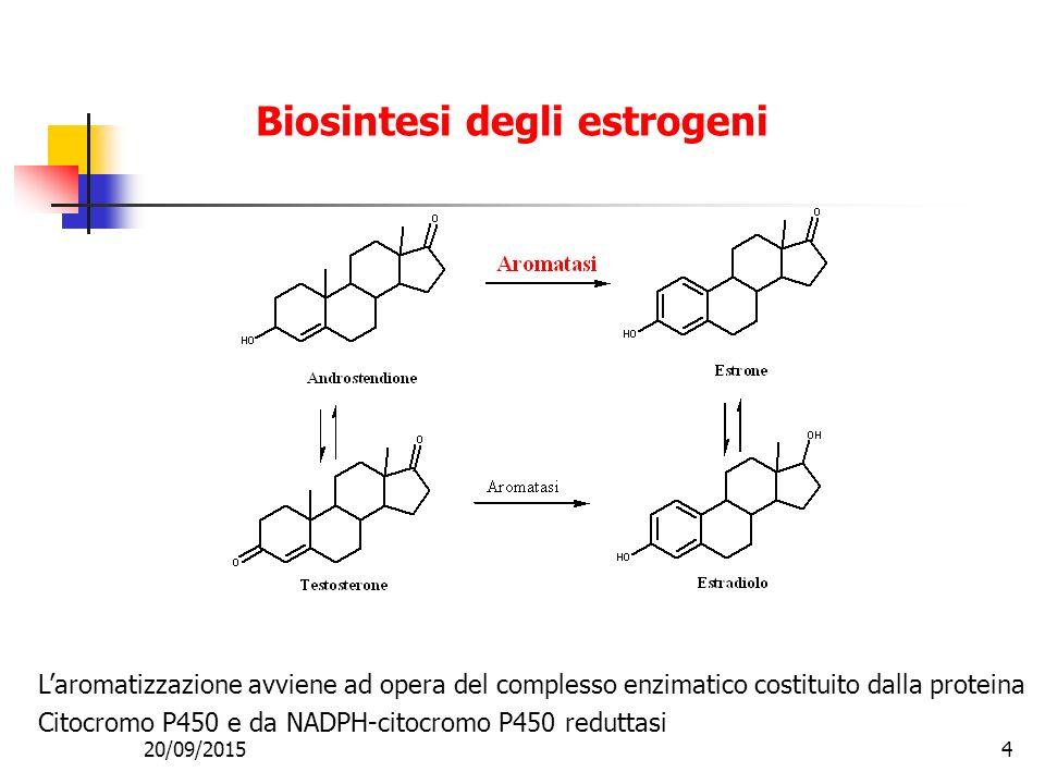 Biosintesi degli estrogeni L'aromatizzazione avviene ad opera del complesso enzimatico costituito dalla proteina Citocromo P450 e da NADPH-citocromo P450 reduttasi 20/09/20154
