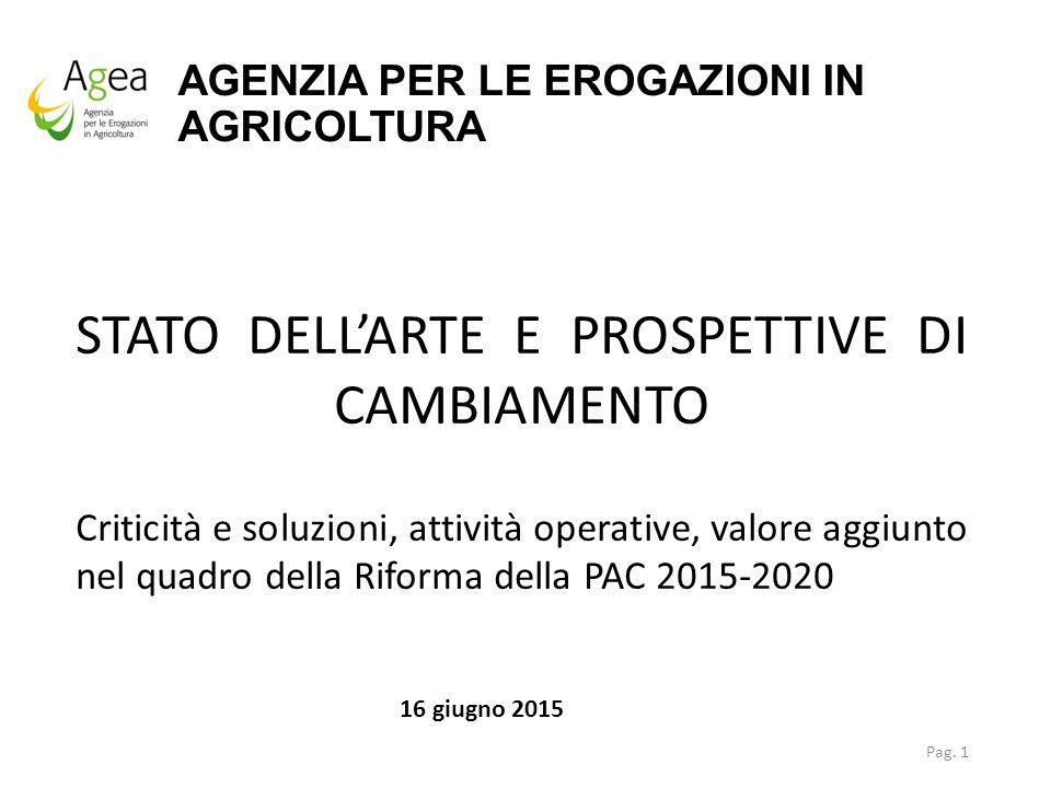 AGENZIA PER LE EROGAZIONI IN AGRICOLTURA Pag. 1 STATO DELL'ARTE E PROSPETTIVE DI CAMBIAMENTO Criticità e soluzioni, attività operative, valore aggiunt