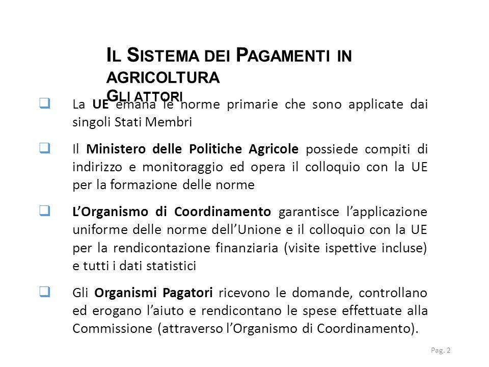 I L S ISTEMA DEI P AGAMENTI IN AGRICOLTURA G LI ATTORI Pag. 2  La UE emana le norme primarie che sono applicate dai singoli Stati Membri  Il Ministe