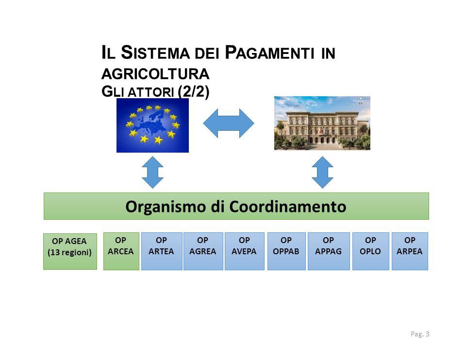 I L S ISTEMA DEI P AGAMENTI IN AGRICOLTURA G LI ATTORI (2/2) Pag. 3 Organismo di Coordinamento OP ARTEA OP AGREA OP AVEPA OP OPPAB OP APPAG OP OPLO OP
