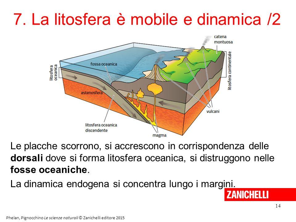 7. La litosfera è mobile e dinamica /2 14 Phelan, Pignocchino Le scienze naturali © Zanichelli editore 2015 Le placche scorrono, si accrescono in corr