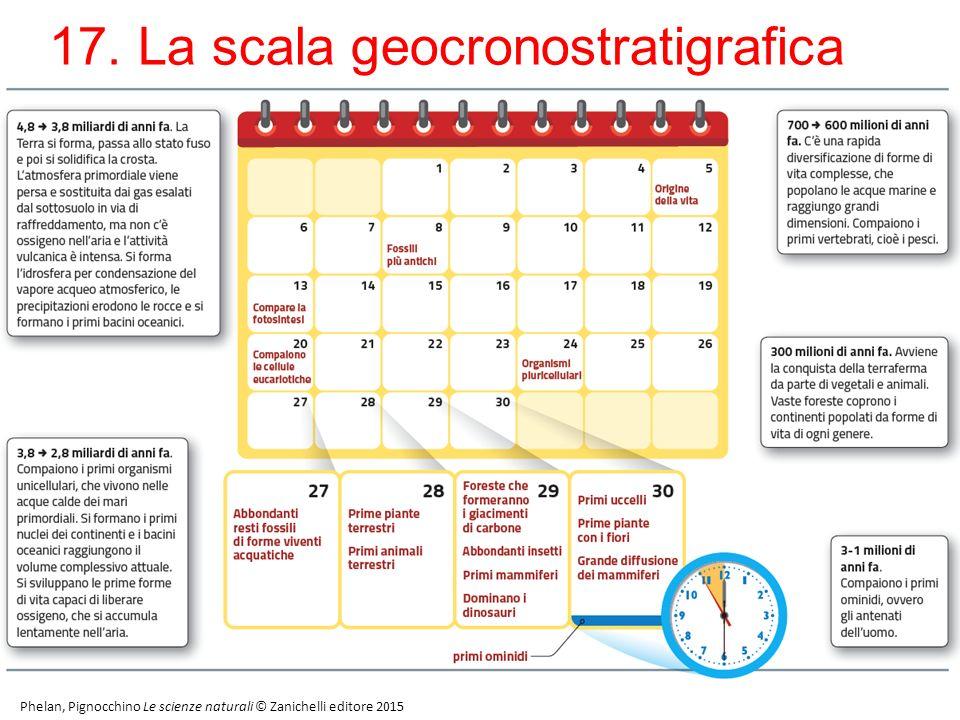 17. La scala geocronostratigrafica /2 28 Phelan, Pignocchino Le scienze naturali © Zanichelli editore 2015