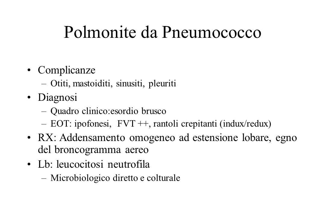 Polmonite da Pneumococco Complicanze –Otiti, mastoiditi, sinusiti, pleuriti Diagnosi –Quadro clinico:esordio brusco –EOT: ipofonesi, FVT ++, rantoli c