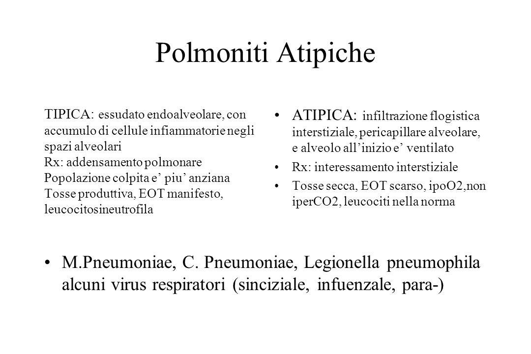 Polmoniti Atipiche ATIPICA: infiltrazione flogistica interstiziale, pericapillare alveolare, e alveolo all'inizio e' ventilato Rx: interessamento inte
