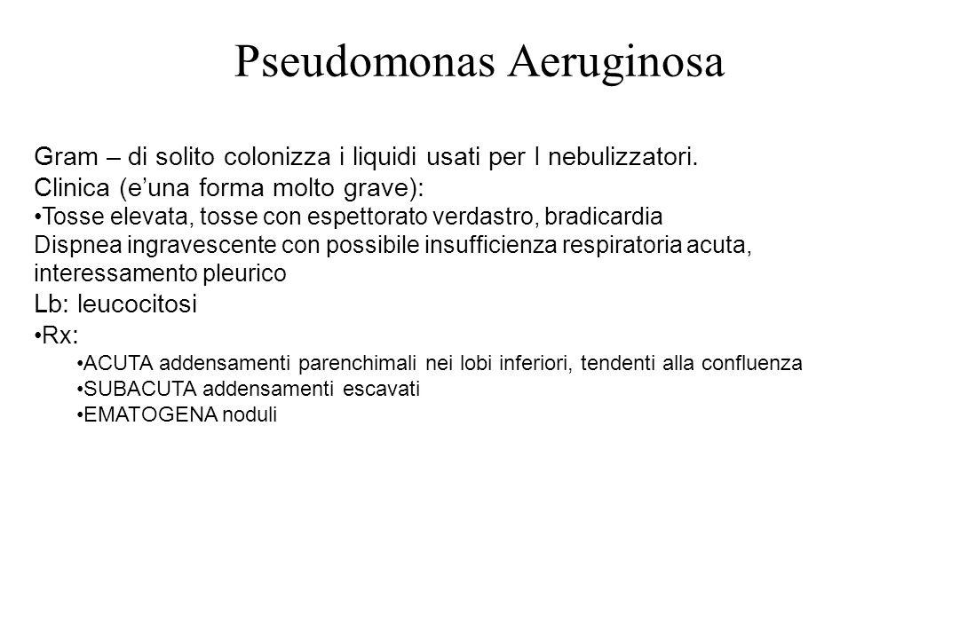 Pseudomonas Aeruginosa Gram – di solito colonizza i liquidi usati per I nebulizzatori. Clinica (e'una forma molto grave): Tosse elevata, tosse con esp