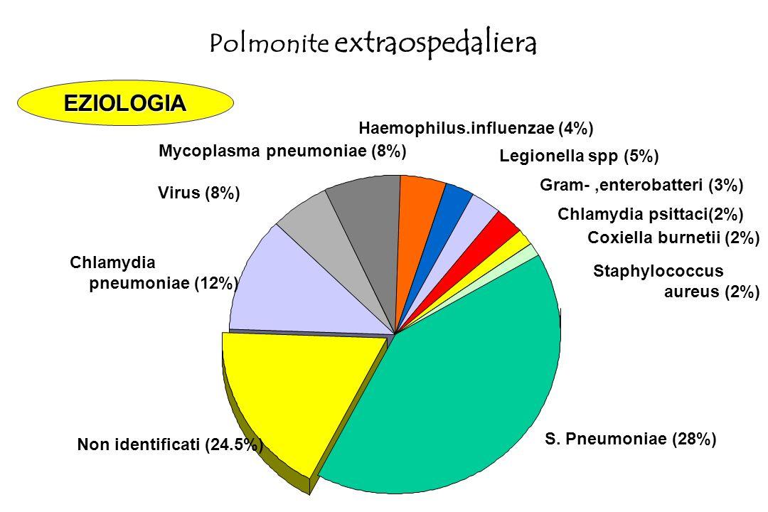 Polmonite da Stafilococco aureo Gram +, colpisce immunodepressi, anziani, ospedalizzati Quadro clinico simile a pneumo (ipertermia remittente, espettorato purulento) piu' grave Rx: focolai multipli disseminati a livello di piu' segmenti polmonari.