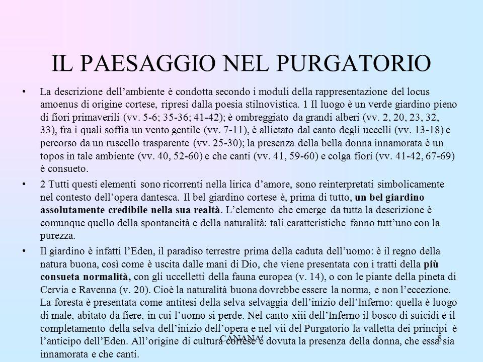 IL PAESAGGIO NEL PURGATORIO La descrizione dell'ambiente è condotta secondo i moduli della rappresentazione del locus amoenus di origine cortese, ripr