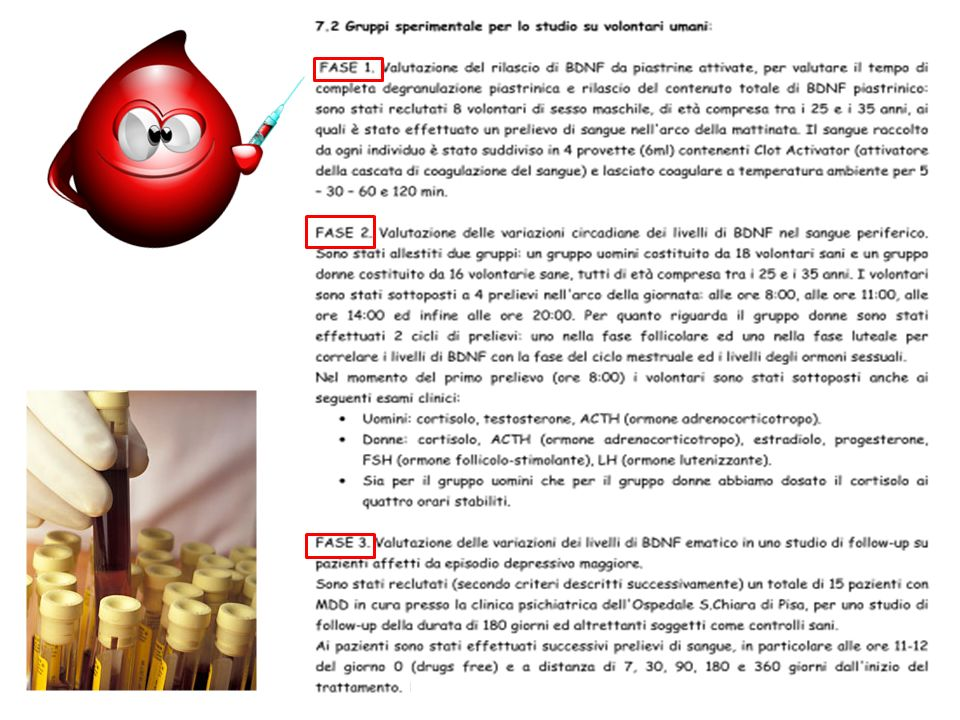 Studio cronico 14gg PLASMA (+) CSF (-) SIERO CORTECCIA ONIS TREND