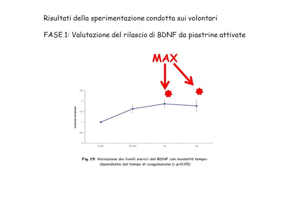 Risultati della sperimentazione condotta sui volontari FASE 1: Valutazione del rilascio di BDNF da piastrine attivate MAX