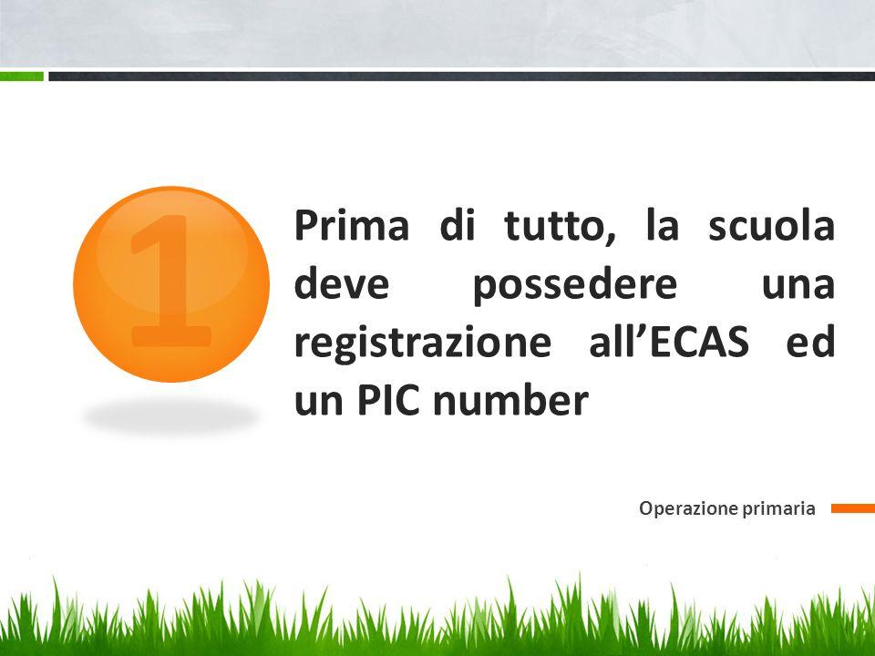 Prima di tutto, la scuola deve possedere una registrazione all'ECAS ed un PIC number Operazione primaria 1