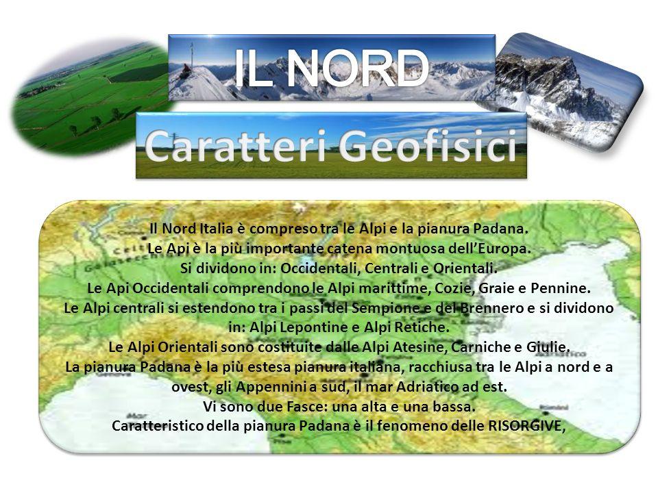Il Nord Italia è compreso tra le Alpi e la pianura Padana. Le Api è la più importante catena montuosa dell'Europa. Si dividono in: Occidentali, Centra