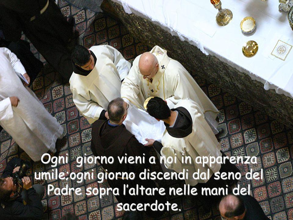 E come ai santi apostoli apparisti in vera carne, così ti mostri a noi nel pane consacrato; e come essi con lo sguardo fisico vedevano solo la tua carne, ma contemplandoti con gli occhi della fede credevano che tu eri Dio,