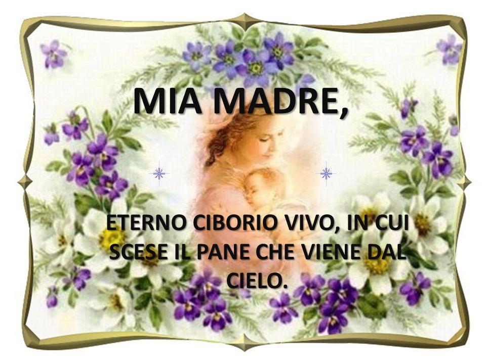 ETERNO CIBORIO VIVO, IN CUI SCESE IL PANE CHE VIENE DAL CIELO. MIA MADRE,