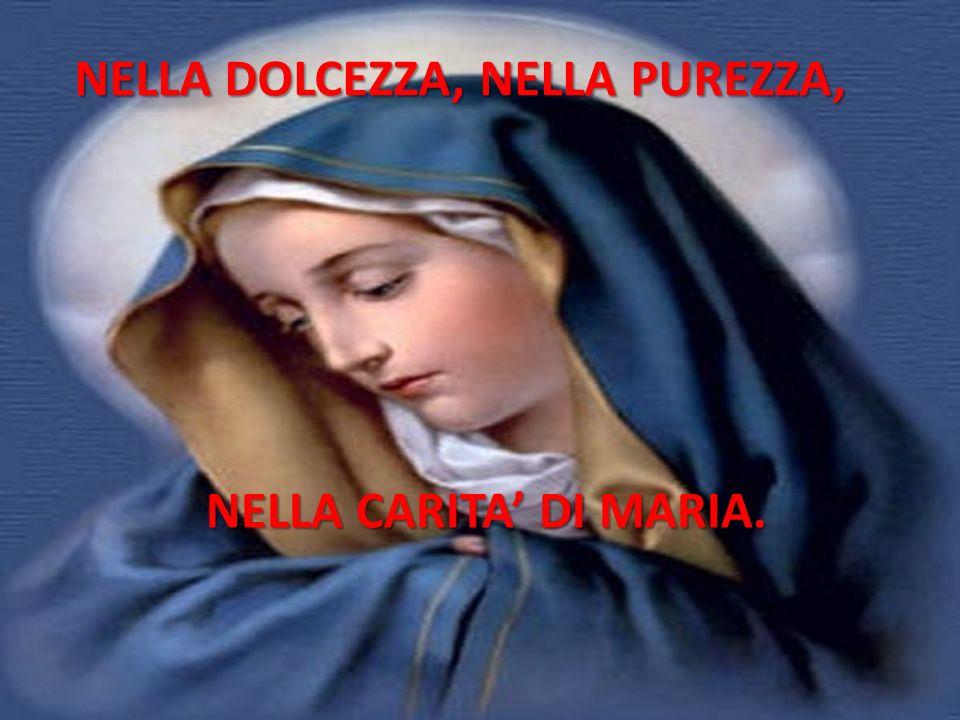 NELLA DOLCEZZA, NELLA PUREZZA, NELLA CARITA' DI MARIA.