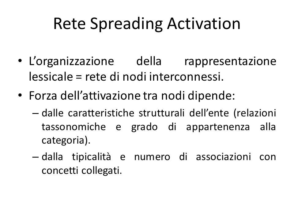 L'organizzazione della rappresentazione lessicale = rete di nodi interconnessi. Forza dell'attivazione tra nodi dipende: – dalle caratteristiche strut