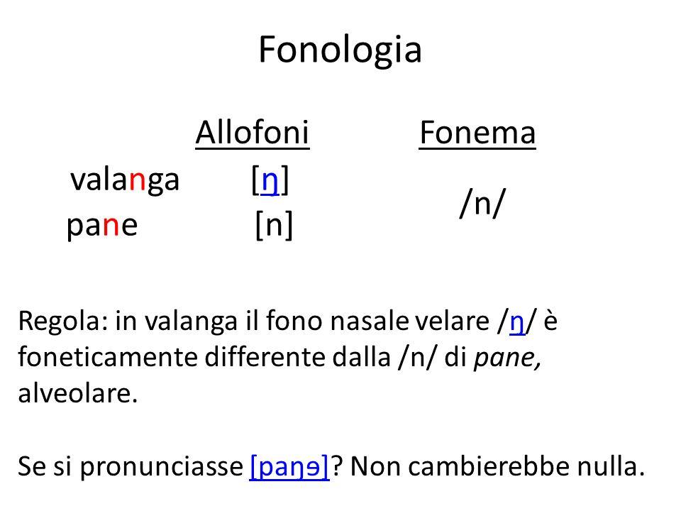 Fonologia Regola: in valanga il fono nasale velare /ŋ/ è foneticamente differente dalla /n/ di pane, alveolare.ŋ Se si pronunciasse [paŋɘ]? Non cambie
