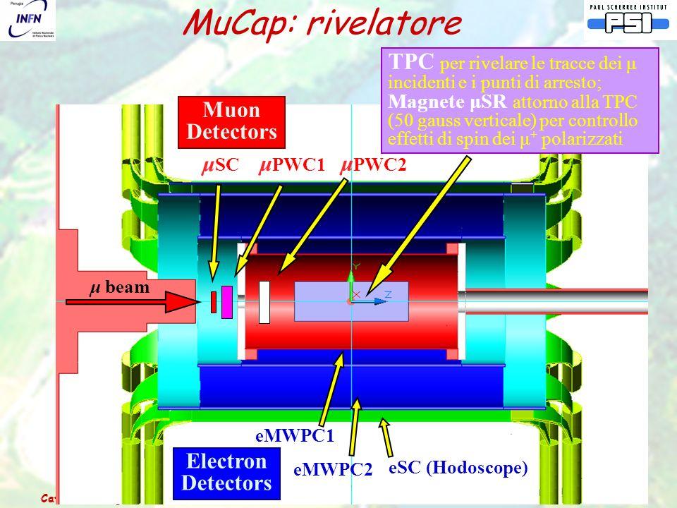 Catania – 3 luglio 2006Relazione dal Comitato Scientifico del PSI 31 μ SC μ PWC1 μ PWC2 TPC per rivelare le tracce dei μ incidenti e i punti di arresto; Magnete μSR attorno alla TPC (50 gauss verticale) per controllo effetti di spin dei μ + polarizzati eMWPC2 eMWPC1 eSC (Hodoscope) μ beam Muon Detectors Electron Detectors MuCap: rivelatore