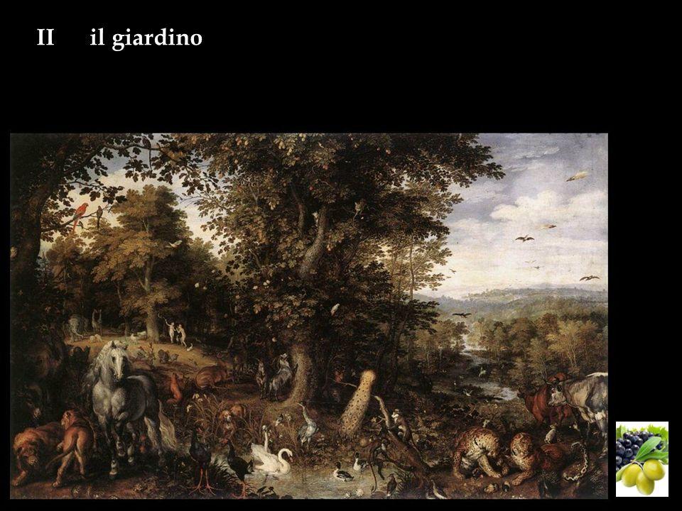 IIil giardino