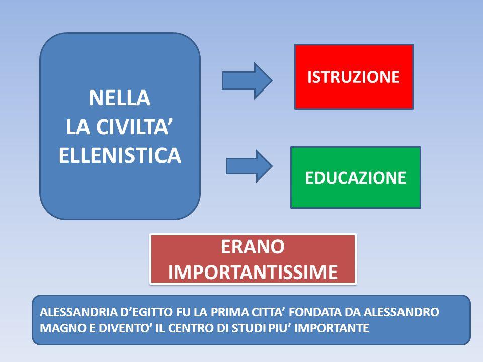 NELLA LA CIVILTA' ELLENISTICA ISTRUZIONE EDUCAZIONE ERANO IMPORTANTISSIME ALESSANDRIA D'EGITTO FU LA PRIMA CITTA' FONDATA DA ALESSANDRO MAGNO E DIVENTO' IL CENTRO DI STUDI PIU' IMPORTANTE