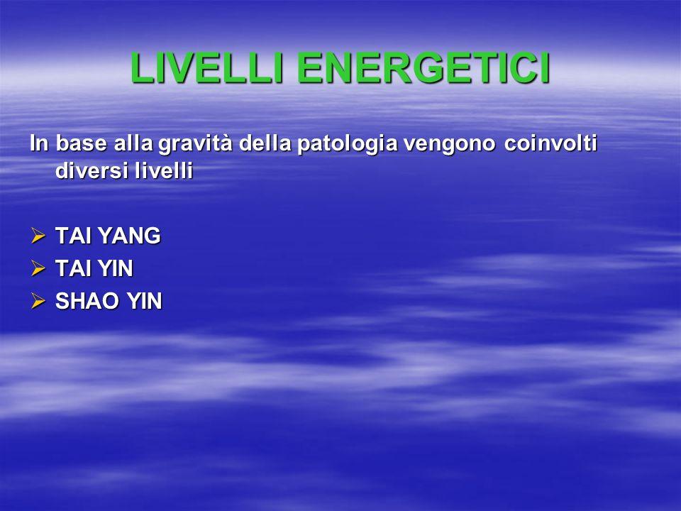 LIVELLI ENERGETICI In base alla gravità della patologia vengono coinvolti diversi livelli  TAI YANG  TAI YIN  SHAO YIN