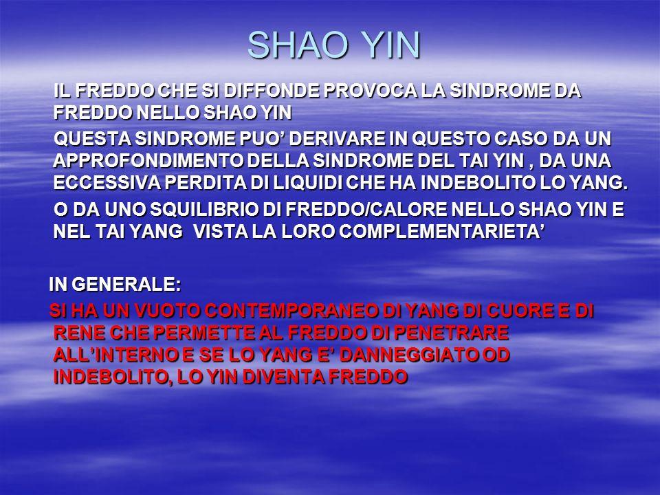 SHAO YIN SHAO YIN IL FREDDO CHE SI DIFFONDE PROVOCA LA SINDROME DA FREDDO NELLO SHAO YIN IL FREDDO CHE SI DIFFONDE PROVOCA LA SINDROME DA FREDDO NELLO