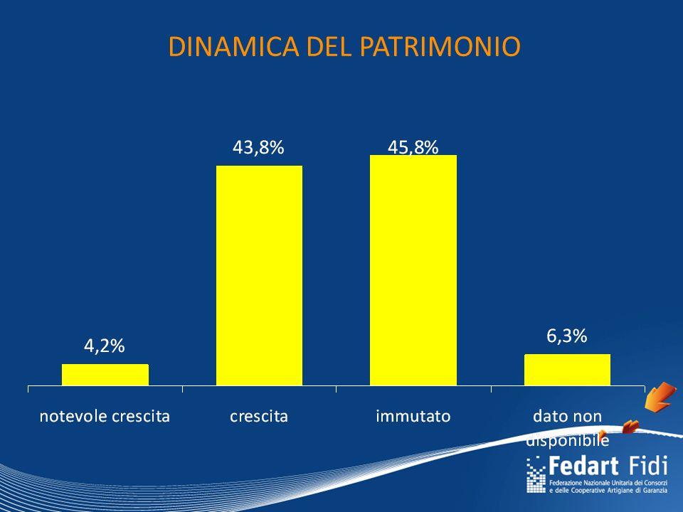 DINAMICA DEL PATRIMONIO