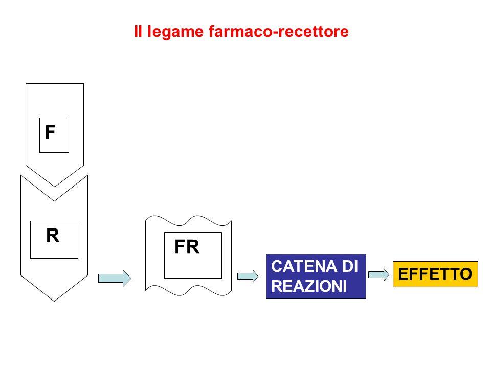 Il legame farmaco-recettore F R FR EFFETTO CATENA DI REAZIONI