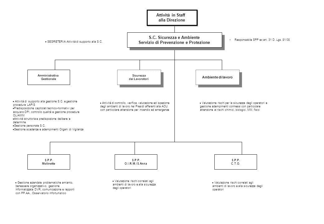 Responsabile SPP ex art.31 D. Lgs. 81/08 S.C.