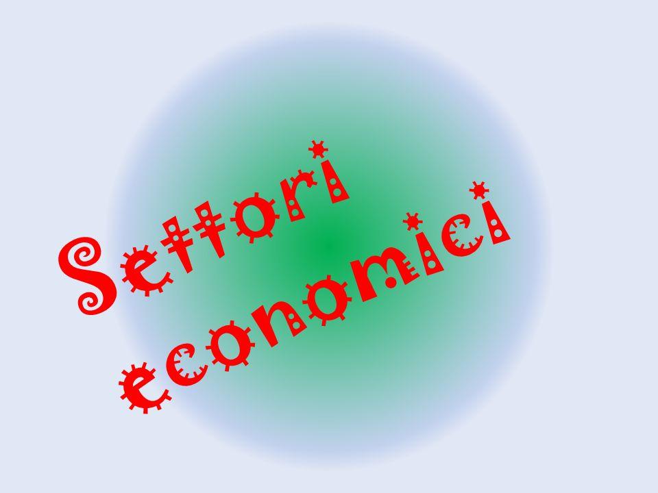 Settori economici