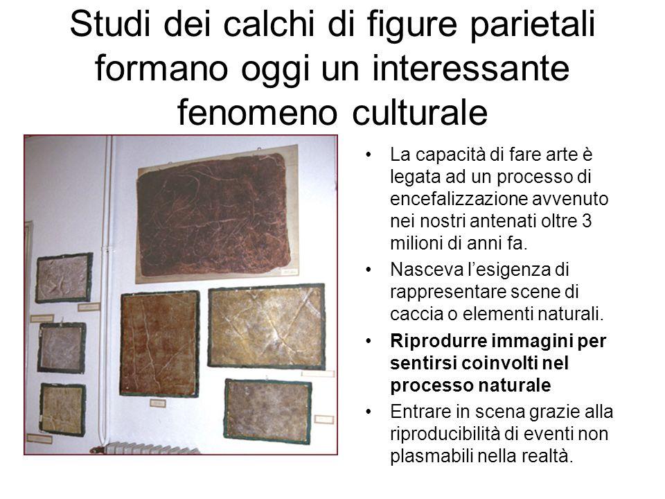 Studi dei calchi di figure parietali formano oggi un interessante fenomeno culturale La capacità di fare arte è legata ad un processo di encefalizzazione avvenuto nei nostri antenati oltre 3 milioni di anni fa.