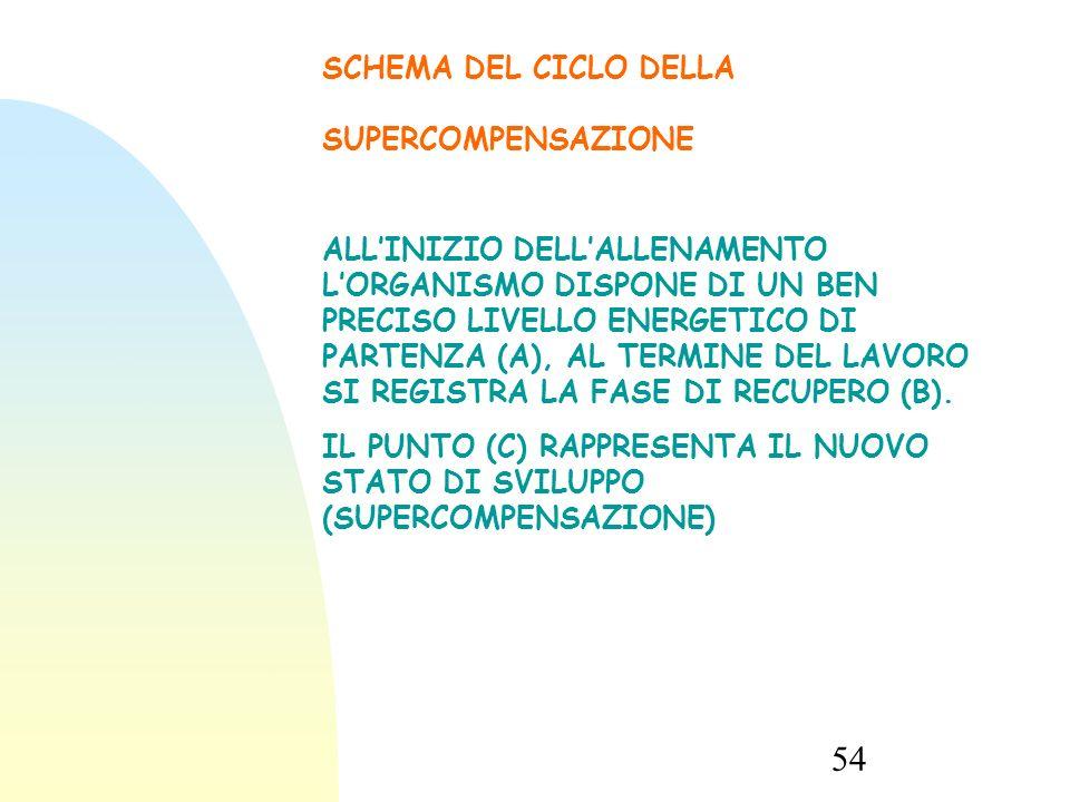 54 SCHEMA DEL CICLO DELLA SUPERCOMPENSAZIONE ALL'INIZIO DELL'ALLENAMENTO L'ORGANISMO DISPONE DI UN BEN PRECISO LIVELLO ENERGETICO DI PARTENZA (A), AL TERMINE DEL LAVORO SI REGISTRA LA FASE DI RECUPERO (B).