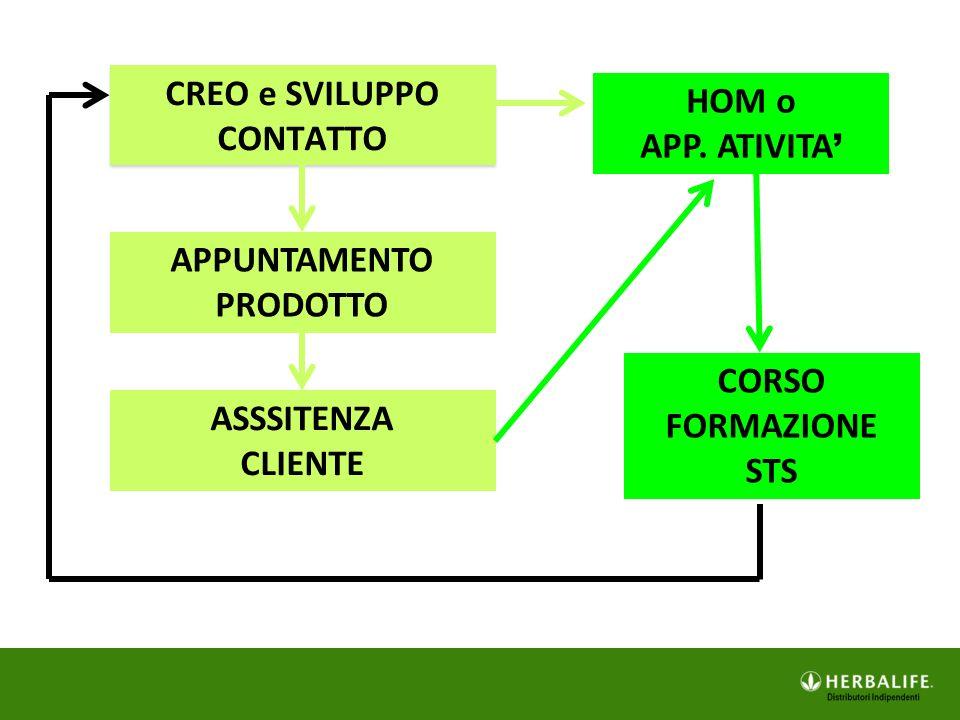 SCUOLA DS  Mailing List  Facebook: STSROMA  Facebook: InFormActionTeam  HBN – Centro Formaz.