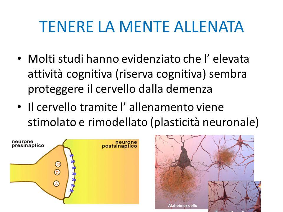 TENERE LA MENTE ALLENATA Molti studi hanno evidenziato che l' elevata attività cognitiva (riserva cognitiva) sembra proteggere il cervello dalla demen