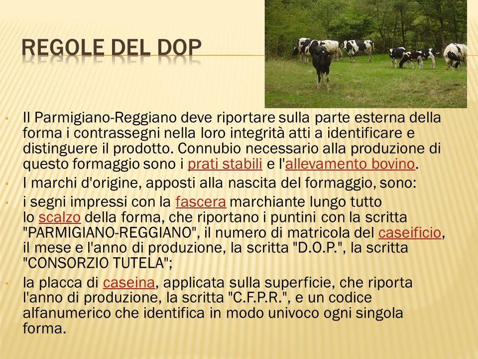 Il Parmigiano-Reggiano deve riportare sulla parte esterna della forma i contrassegni nella loro integrità atti a identificare e distinguere il prodott