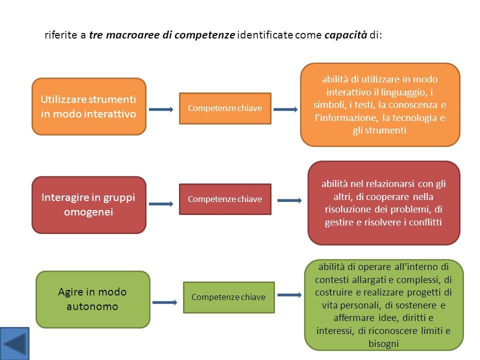 riferite a tre macroaree di competenze identificate come capacità di: Utilizzare strumenti in modo interattivo Interagire in gruppi omogenei Agire in