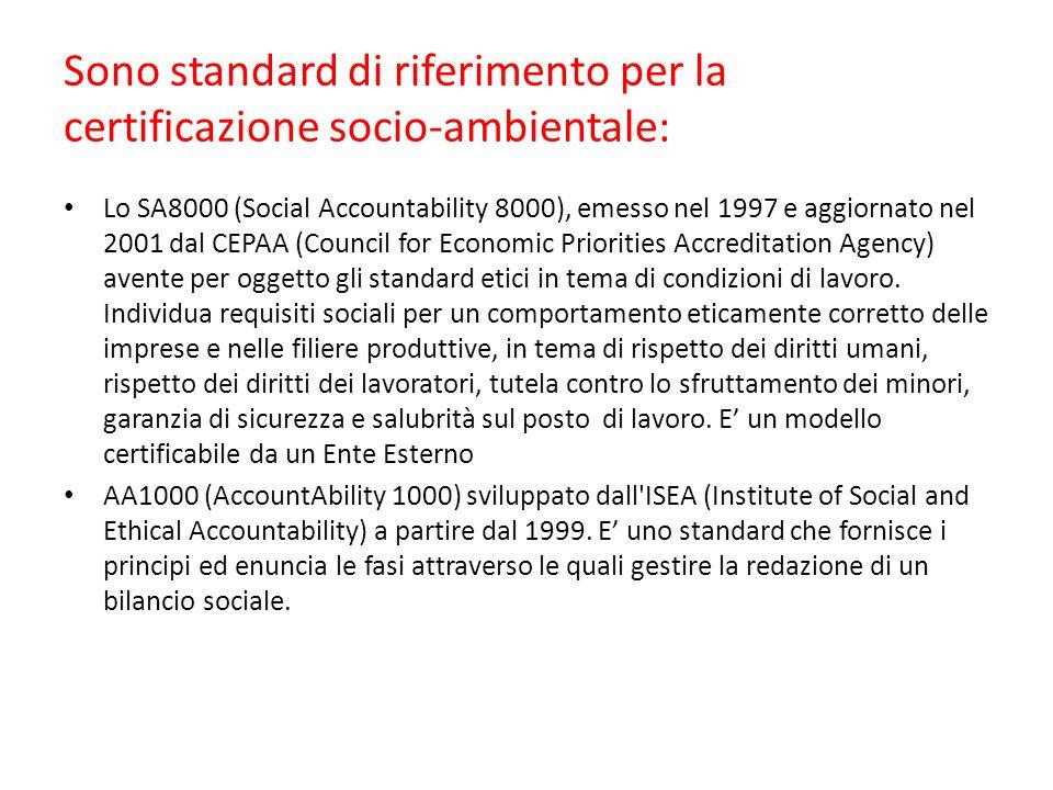 Sono standard di riferimento per la certificazione socio-ambientale: Lo SA8000 (Social Accountability 8000), emesso nel 1997 e aggiornato nel 2001 dal CEPAA (Council for Economic Priorities Accreditation Agency) avente per oggetto gli standard etici in tema di condizioni di lavoro.