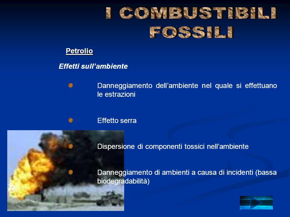 Effetti sull'ambiente Petrolio Danneggiamento dell'ambiente nel quale si effettuano le estrazioni Effetto serra Dispersione di componenti tossici nell