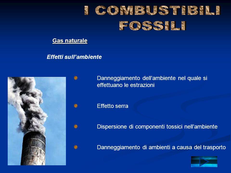 Danneggiamento dell'ambiente nel quale si effettuano le estrazioni Effetto serra Dispersione di componenti tossici nell'ambiente Danneggiamento di amb