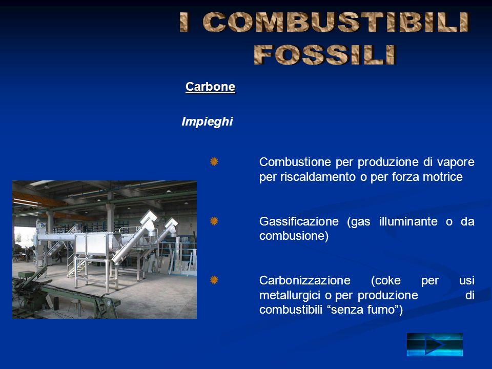 Combustione per produzione di vapore per riscaldamento o per forza motrice Gassificazione (gas illuminante o da combusione) Carbonizzazione (coke per