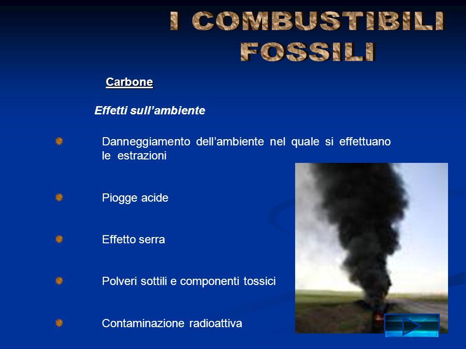 Danneggiamento dell'ambiente nel quale si effettuano le estrazioni Piogge acide Effetto serra Polveri sottili e componenti tossici Contaminazione radi