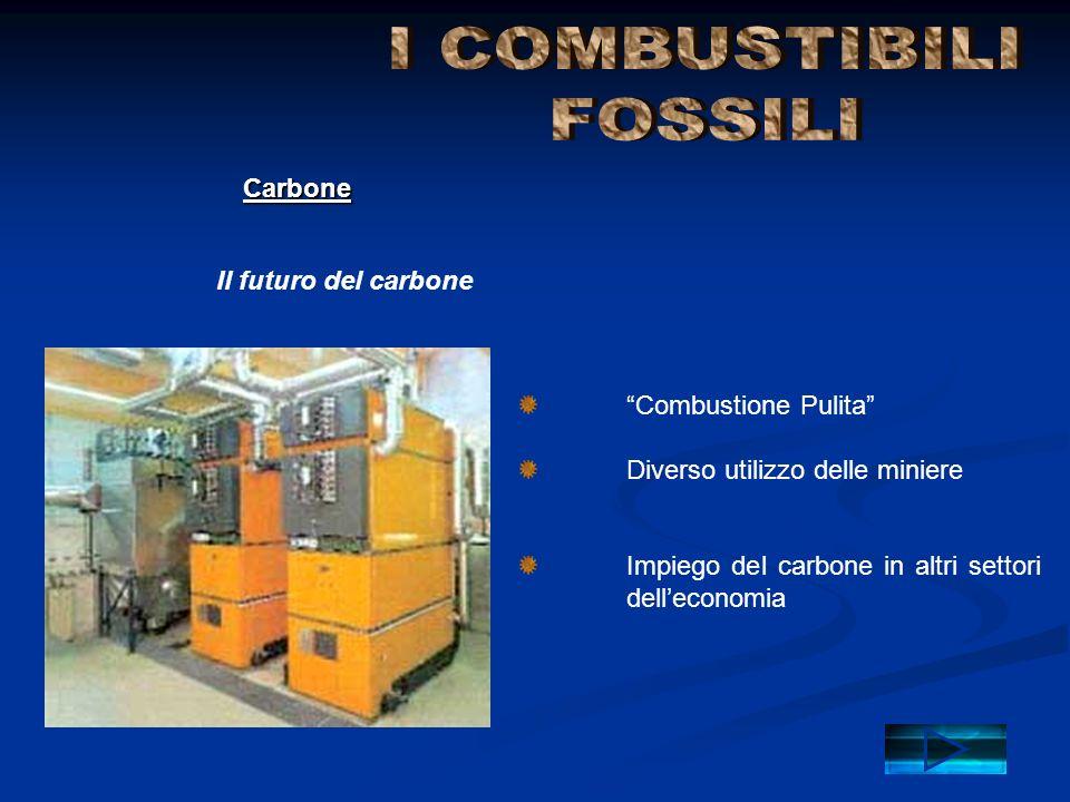 """""""Combustione Pulita"""" Diverso utilizzo delle miniere Impiego del carbone in altri settori dell'economia Il futuro del carbone Carbone"""