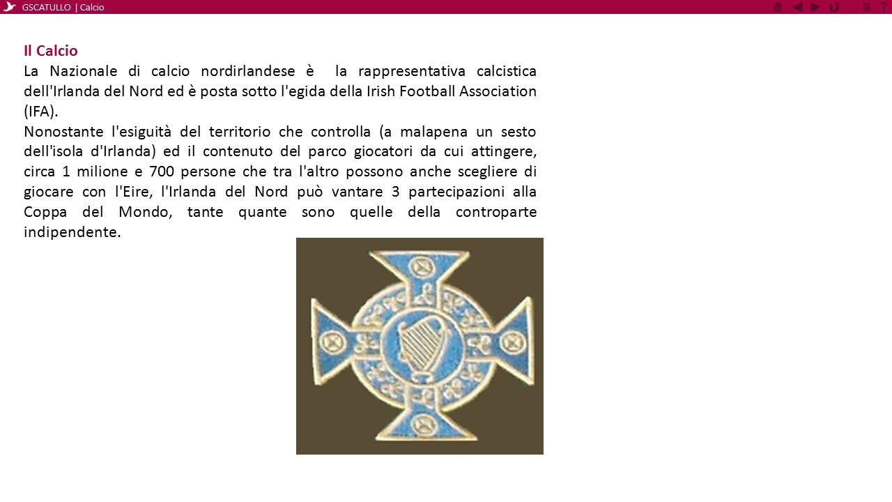 Il Calcio La Nazionale di calcio nordirlandese è la rappresentativa calcistica dell'Irlanda del Nord ed è posta sotto l'egida della Irish Football Ass
