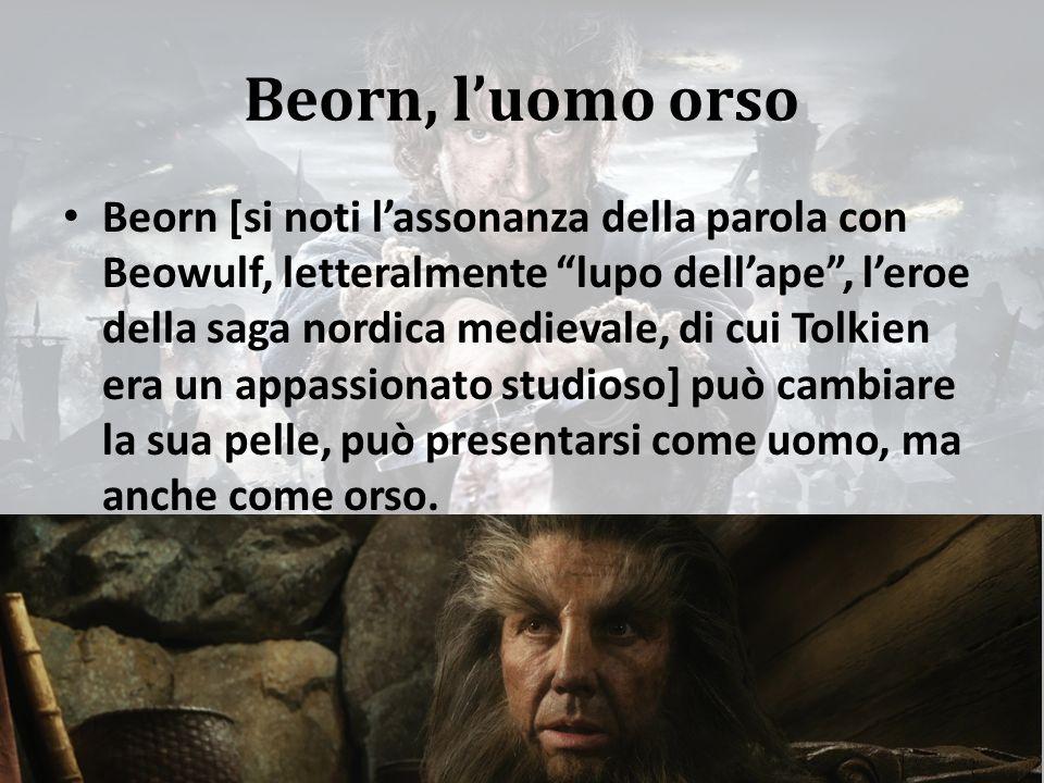 Beorn, l'uomo orso Beorn [si noti l'assonanza della parola con Beowulf, letteralmente lupo dell'ape , l'eroe della saga nordica medievale, di cui Tolkien era un appassionato studioso] può cambiare la sua pelle, può presentarsi come uomo, ma anche come orso.