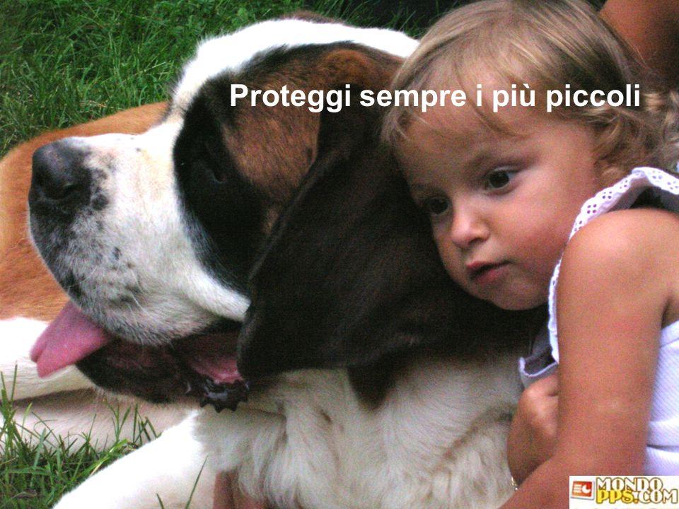 Proteggi sempre i più piccoli