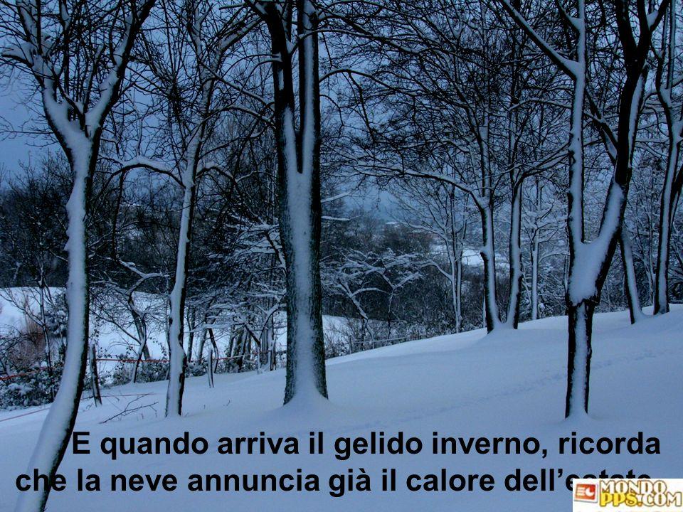 E quando arriva il gelido inverno, ricorda che la neve annuncia già il calore dell'estate.