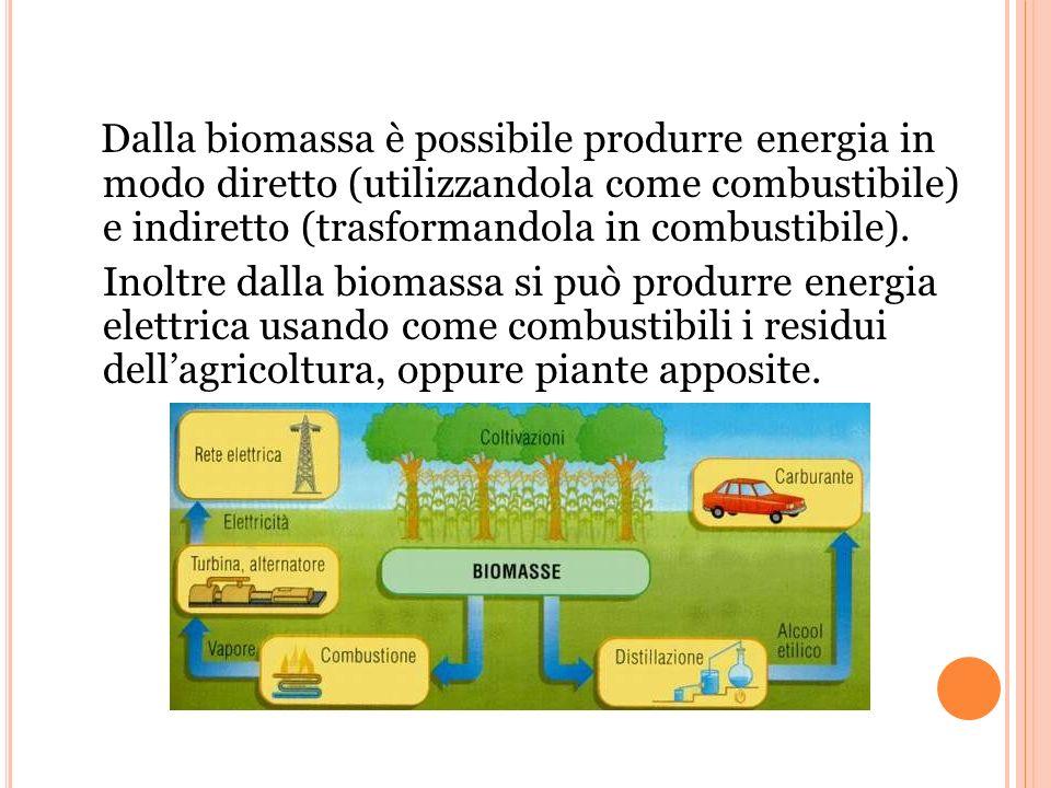 Dalla biomassa è possibile produrre energia in modo diretto (utilizzandola come combustibile) e indiretto (trasformandola in combustibile).