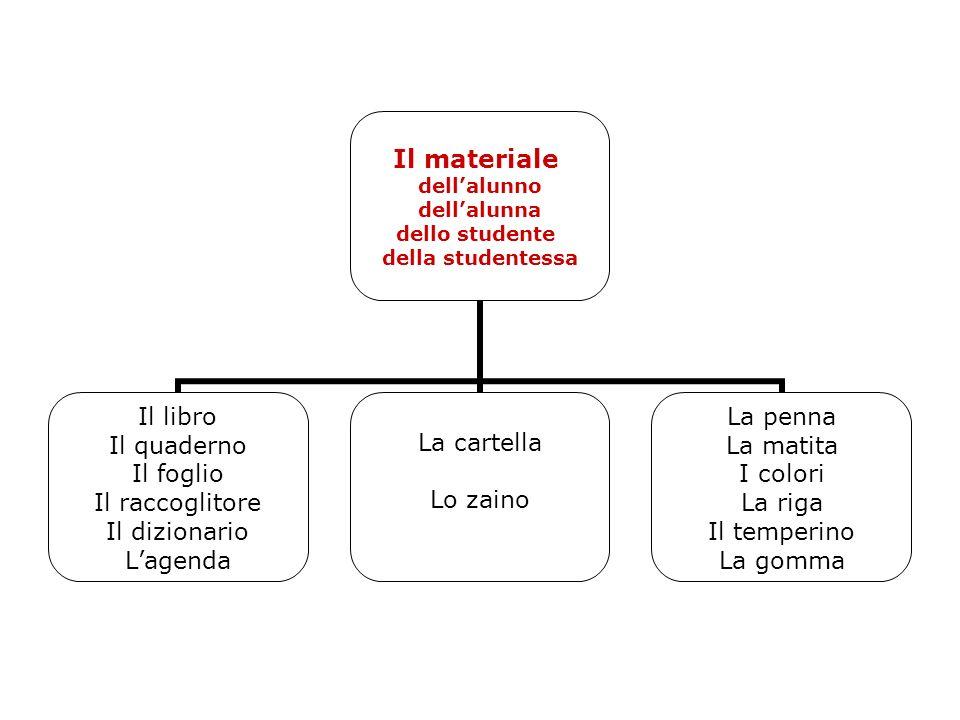 Il materiale dell'alunno dell'alunna dello studente della studentessa Il libro Il quaderno Il foglio Il raccoglitore Il dizionario L'agenda La cartell